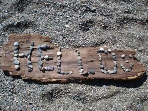 Whytcliffe Park Caitlyn's beach art