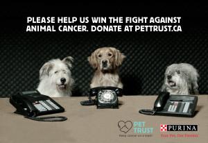 Keep Cancer on a Leash